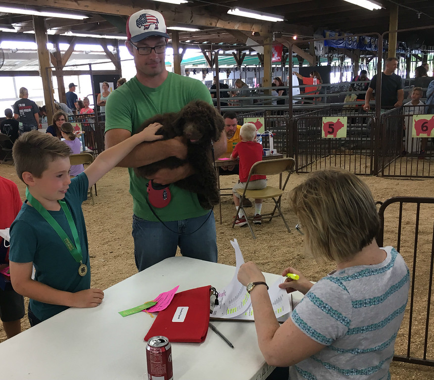 . Richard Payerchin � The Morning Journal <br> Brooks Thompson, 8, of Wellington, participates in the 4-H Cloverbud Show and Tell program at the Lorain County Fair on Aug. 18, 2018. He showed and told about the family dog, Greyson, and got some help from his father, Jaren.