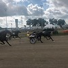 Briana Contreras — The Morning Journal <br> Horses dash down the race track during the Harness Race at the Lorain County Fair in Wellington on Aug. 21.