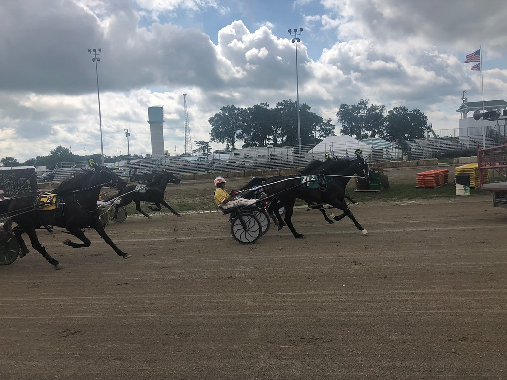 . Briana Contreras � The Morning Journal <br> Horses dash down the race track during the Harness Race at the Lorain County Fair in Wellington on Aug. 21.