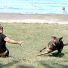 Jonathan Tressler - The News-Herald. Mentor resident Sara Kalenits throws a disk for her 1 1/2-year-old shepherd mix Luna Aug. 18 during the Mentor Civic Center Pool's annual Doggie Dip Day.