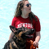Jonathan Tressler - The News-Herald. A scene from the annual Doggie Dip Day Aug. 18 at Mentor Civic Center Pool.