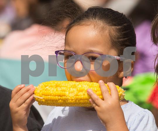 dek-825-CornFest1