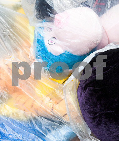 dcnews_082516_CornFest_Prev_07
