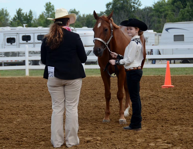 Kelsey Leyva — The Morning Journal <br> Lauren Cleary presents her horse to judge Michelle Gagat during the Junior Fair Saddle Horse Show at the Lorain County fair on Aug. 24.