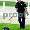 dcnews_082916_Raccoon_Chase_03