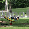 dc.0831.hammock feature