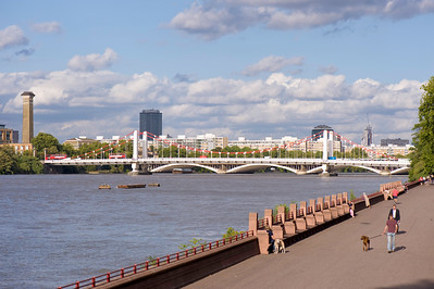 Thames River seen from Battersea Park, London, United KIngdom