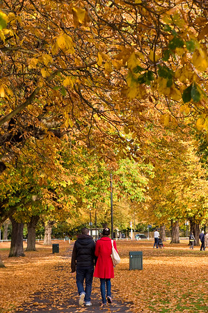 Autumn on Ealing Common, Ealing, W5, London, United Kingdom