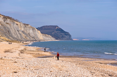 Coast near Charmouth, United Kingdom