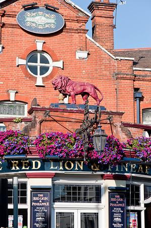 Red Lion Pub in Acton, W3, London, United Kingdom