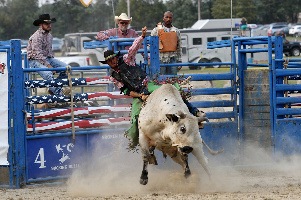 . Jonathan Tressler - The News-Herald. A rodeo rider hangs on for dear life right out the gate Sept. 4 on the final day of the 195th Annual Great Geauga County Fair.