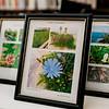 9 19 20 Nahant Herbarium exhibit 8