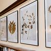 9 19 20 Nahant Herbarium exhibit 2