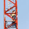9 4 19 Lynn crane operator 20