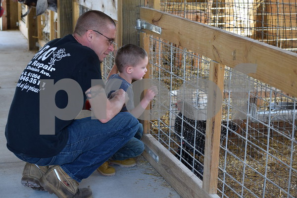 Deanna Frances for Shaw Media<br /> Mike Weems, 34, of Polo, and his 2-year-old son, Gavin, feed the animals at the Barn Yard Petting Zoo on Sunday at Jonamac Orchard, 19412 Shabbona Road in Malta.