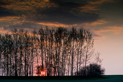 Rural landscape, Warmia Region, Poland