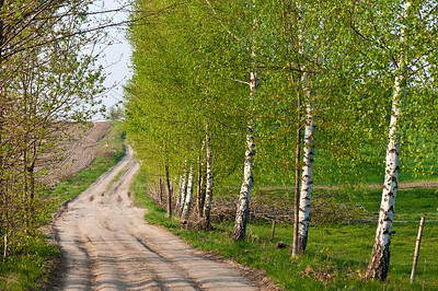 Country road, Poland