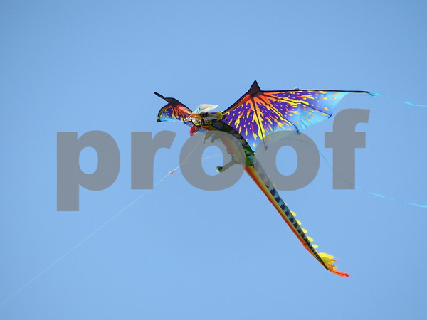 Katie Finlon for Shaw Media<br /> Professional and amateur flyers brought out their kites Sunday for DeKalb Kite Fest on the Northern Illinois University campus in DeKalb.