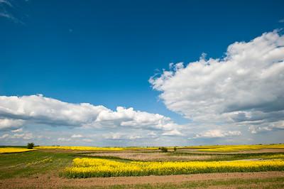 Rural landscape of Wielkopolska, Poland