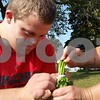 Christopher Heimerman – cheimerman@shawmedia.com<br /> Jake Hickey, 22, of Sycamore, works with Walnut Grove Vocational Farm worker Meghan Chadra to bundle and tie fresh parsley Friday morning at the farm, 33600 Pearl St., Kirkland. Jake just started a new job at Klein's Quality Produce in Burlington, thanks to the vocational program.