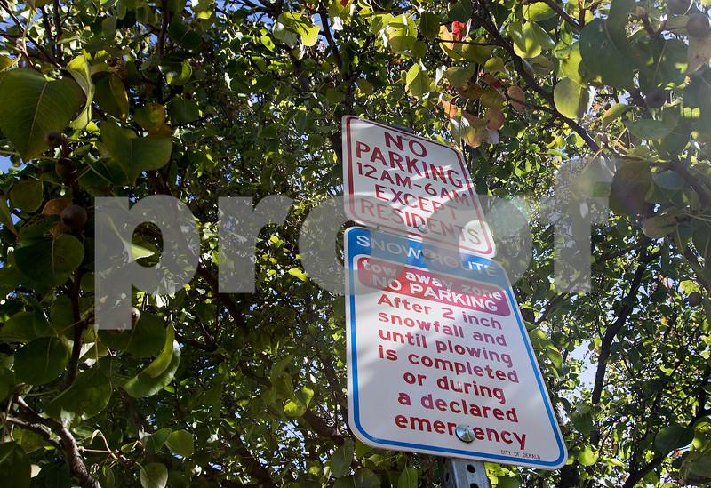 dnews_0919_No_Parking_04