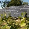 dnews_mon_924_solartour3