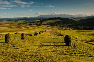 Rural landscape by Tatra Mountains, Podhale, Poland