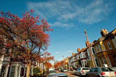 Eastbury Grove, W4, pretty street in autumn colours, London, United Kingdom