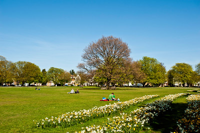 Spring on Ealing Common, London, United Kingdom