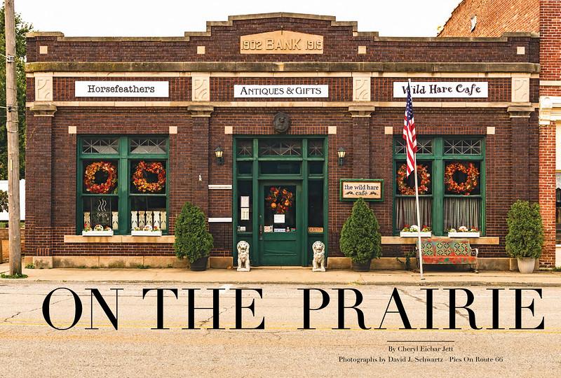 On The Prairie Wild Hare