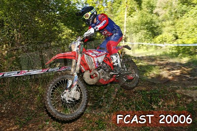 FCAST 20006