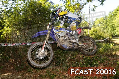 FCAST 20016