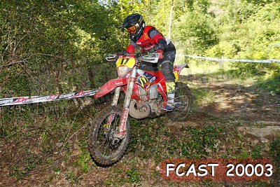 FCAST 20003