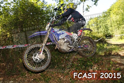 FCAST 20015