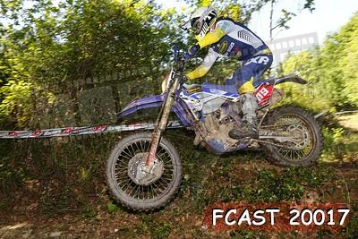 FCAST 20017