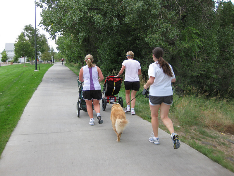 In addition to commuters, the trail is enjoyed by many other types of users.<br /> <br /> The Cherry Creek Trail runs from downtown Denver for more than 40 miles, connecting multiple suburbs and counties to the heart of the city.  The trail is below grade for much of the way, following the bed of the creek.  This minimizes the number of road crossings, and thus reduces conflicts between cars and nonmotorized travelers.  Residences, jobs, schools, parks, and shopping are all seamlessly connected on the trail corridor.<br /> <br /> The trail is a regional effort.  Various TE grants with differing sources of matching funds have contributed to constructing and improving the trail including $417,000 in 1999 to the City of Denver, $164,844 in 2001 to the town of Glendale, $365,000 in 2003 to Arapahoe County, and an additional $315,000 to Denver in 2005.  The end product is a trail that is one of the spines of a regional network of trails connecting travelers and destinations throughout the Denver area.