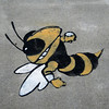 The Georgia Tech mascot, the Yellow Jacket. <br /> <br /> The Fifth Street Bridge over I-75/I-85 provides a direct connection between the Georgia Tech campus and Midtown, a bustling neighborhood in downtown Atlanta. In 2004, a TE grant of $350,000 contributed towards the cost of widening the bridge to include bicycle lanes, 24-foot sidewalks, and more than 30,000 square feet of lush green space. The federal contribution was leveraged by significantly larger state and private contributions.  The bridge opened to the public in 2006, and has been recognized in numerous national publications.<br /> <br /> This innovative project is on the cutting edge of contemporary urban planning. As dense urban areas struggle to find room for green space, planners in American cities are putting parks in the sky by incorporating green elements into transportation infrastructure, such as New York's High Line Park (on an abandoned elevated rail track) or Millennium Park in Chicago (on top of a parking garage).<br /> <br /> The experience for users of the bridge stands in stark contrast to the fourteen lanes of highway traffic that rush beneath the bridge. Within the confines of the park space, the roar of the interstate is reduced to a distant hum. Pedestrian and bicycle travelers move at their own pace, while blooming trellises provide shade and beauty for those who make the bridge their destination.