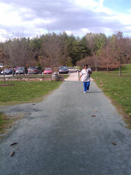 """The Saunders-Monticello Trail is a 2-mile, ADA accessible, bike and pedestrian trail that provides visitors of Monticello a safe alternative to Route 53, which lacks bike and pedestrian facilities. It is also wildly popular among community residents who use it for recreation and fitness opportunities. The trail terminates at the <a href=""""http://www.monticello.org/featured/new_vc.html"""">Thomas Jefferson Visitor Center and Smith History Center</a>.  The Thomas Jefferson Parkway (Route 53), part of the <a href=""""http://www.byways.org/explore/byways/2343/directions.html"""">Journey Through Hallowed Ground Byway</a>, serves as the scenic entrance to Monticello in Albermarle County, Virginia.  Developed by the Thomas Jefferson Foundation, the Parkway improvement project was a $6.5 million project that took place between 1996 and 2002 and involved the development of the <a href=""""http://www.monticello.org/parkway/trail.html""""> Saunders-Monticello Trail</a>, an <a href=""""http://www.monticello.org/parkway/arboretum.html"""">arboretum</a>, a 2-acre <a href=""""http://www.monticello.org/parkway/pond.html"""">pond</a>, and the <a href=""""http://www.monticello.org/parkway/bridge.html"""">Saunders Bridge</a>.  A $3.4 million TE grant, procured in 1992, along with private donations in the amount of $3.1 million provided funding for the Thomas Jefferson Parkway improvements."""