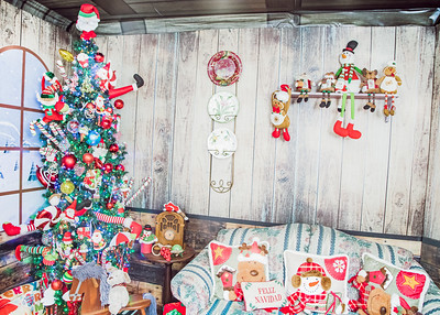 IMG_3224October 11, 2019 The House of Christmas 2019