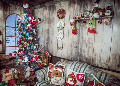 IMG_3208October 11, 2019 The House of Christmas 2019