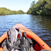Kayaking through the Everglades!