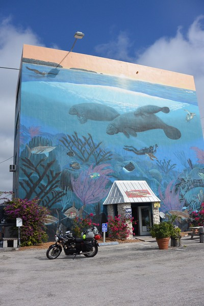 Wyland mural...Have seen and visited many of these around the world! Get underwater artist that I met years ago in Hawaii!