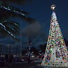 Decoration for Christmas in Key West...my first night there I went walking
