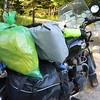 """No bear boxes so all must be in """"vehicle"""" a little nervous so packed up Amelia and moved near the road - we both made it through the night black bear free!"""