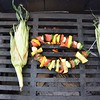 shish-kabobs  and grilled sweet corn