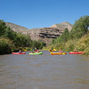 Verde River Institute Float, Tapco to Tuzi, 10/1/19 - 65 CFS