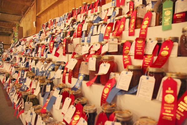 2010 County Fair - MIscellaneous