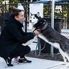 10 18 18 Peabody dog park opening 9