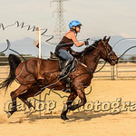 Full Gallop Photography's photo