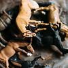 10 26 18 Lynn diorama artist 24
